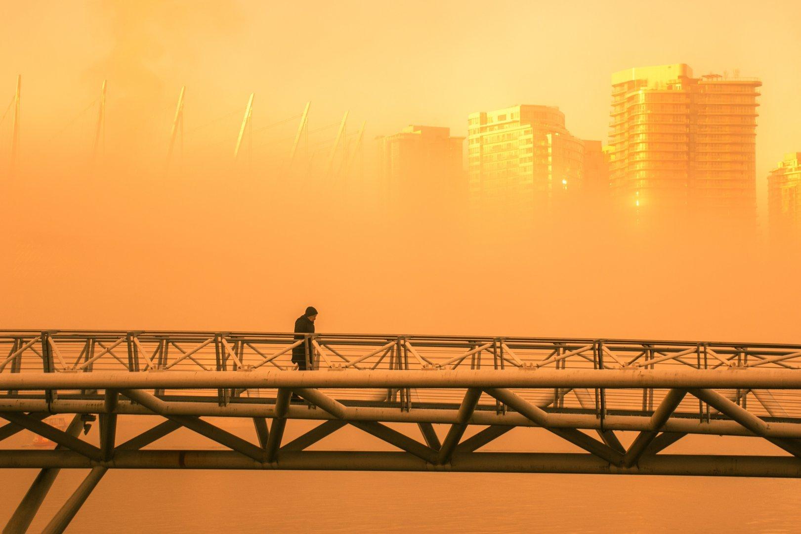 Фотография Liann (Vancouver, Canada)