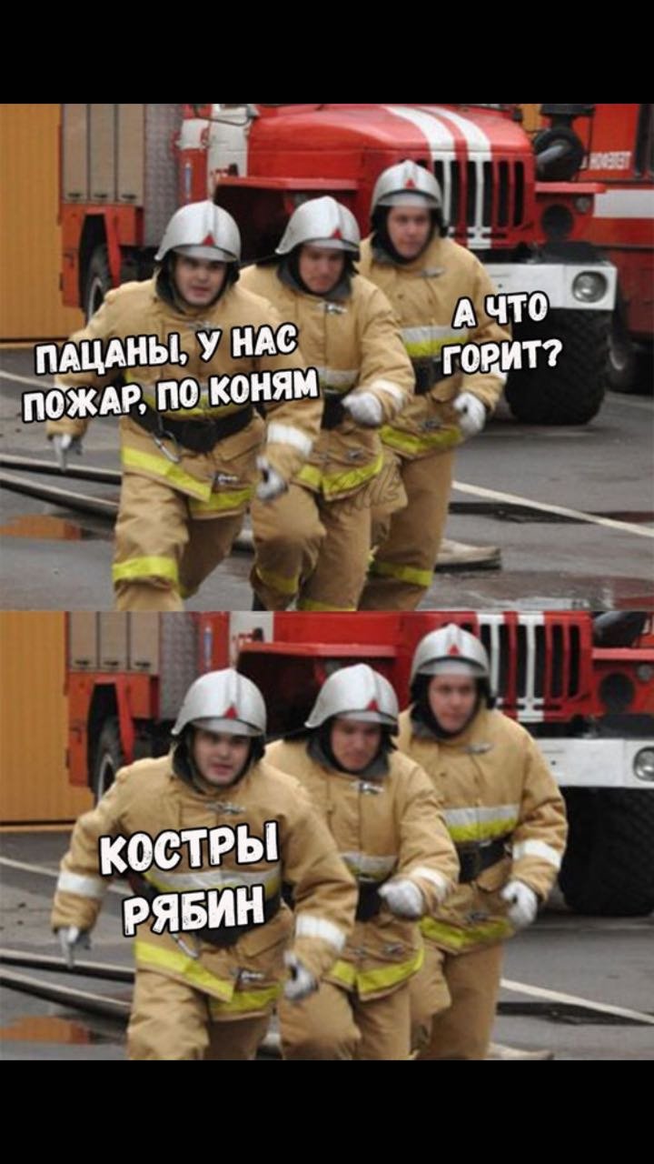 news_5b8d81ac0530f.jpeg