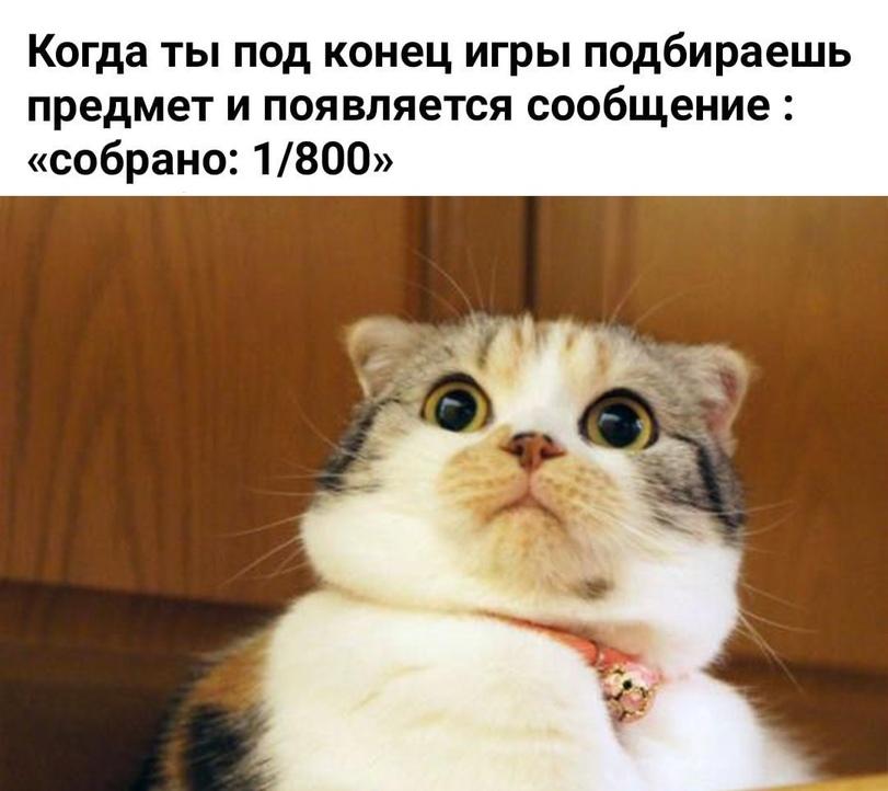 Good meme – good emotions! #65