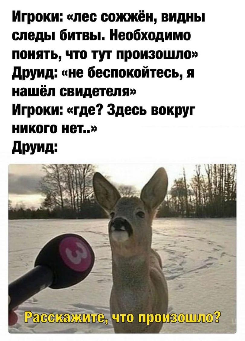 news_60017b71cc934.jpeg