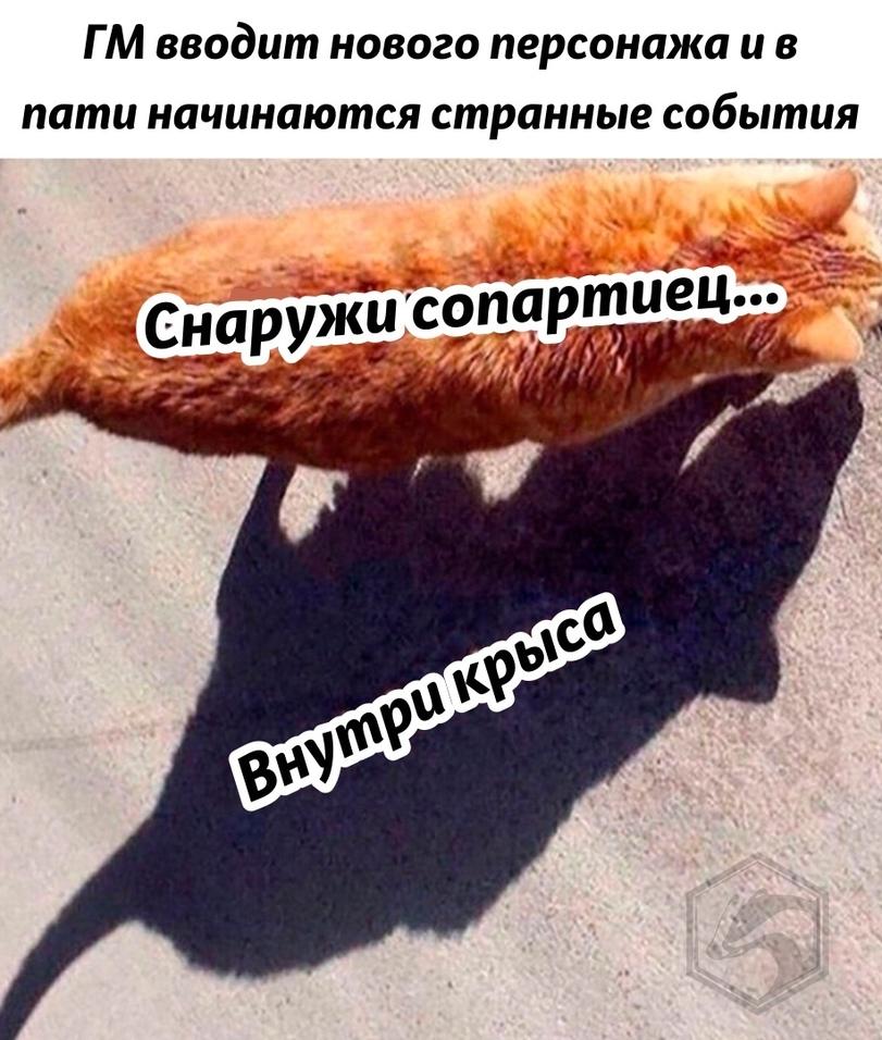 news_602fa2eed0cc0.jpeg