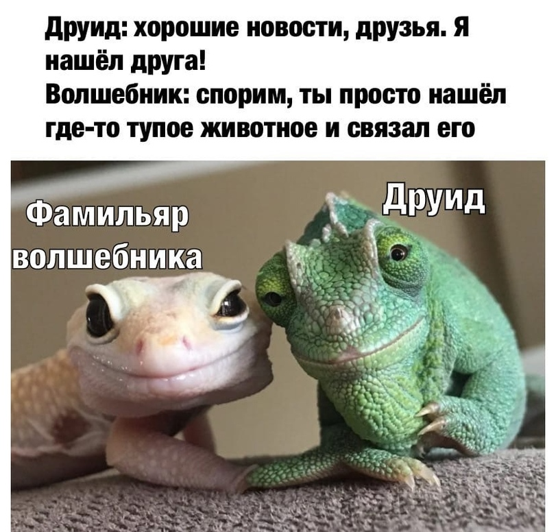 news_607974252c886.jpeg