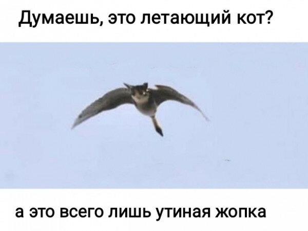 news_6082943149db2.jpeg