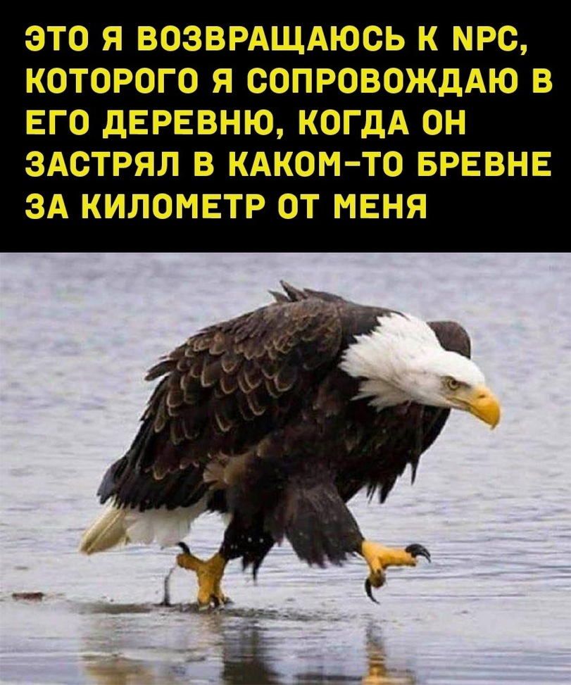news_6103fa86b7e36.jpeg