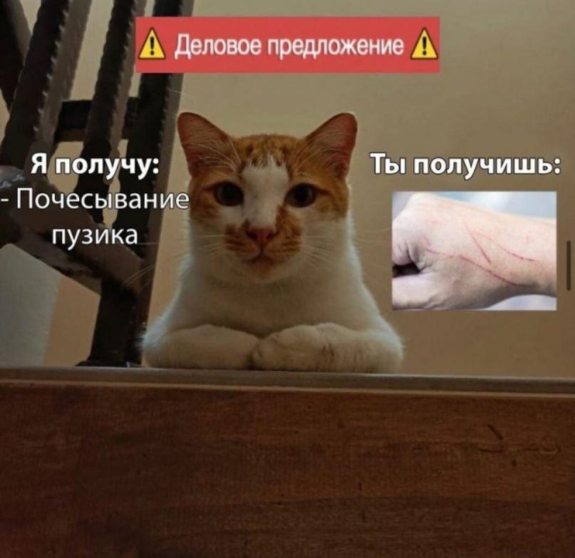news_6103fa93828e6.jpeg
