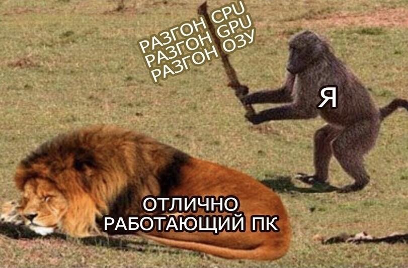 news_610d310a1f61d.jpeg