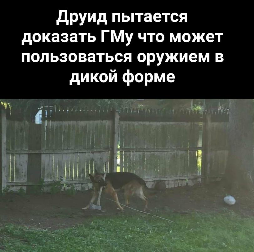 news_611f930642cac.jpeg