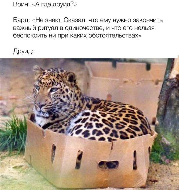 news_611f9370589fd.jpeg