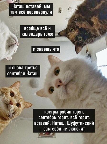 news_6131e845afea6.jpeg